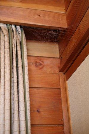 Hotel Ambient Tateshina Cottage : なかなか上は見上げないのでしょう。