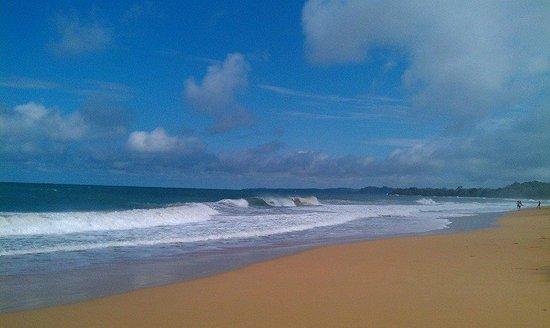 Tesoro Escondido: Playa Bluff