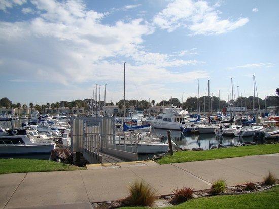 The Dana on Mission Bay: marina