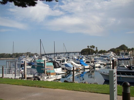 The Dana on Mission Bay: view from the grounds