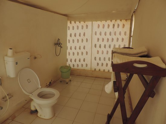 Winds Desert Camp : Bath room