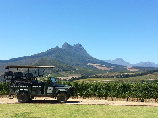 Warwick Wine Estate: The safari vehicle