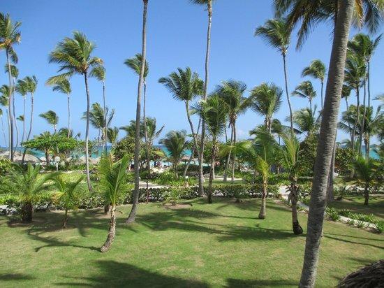 Grand Palladium Bavaro Suites Resort & Spa : vistas