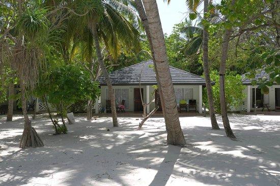 Sun Island Resort: Пляжный бунгало (204)