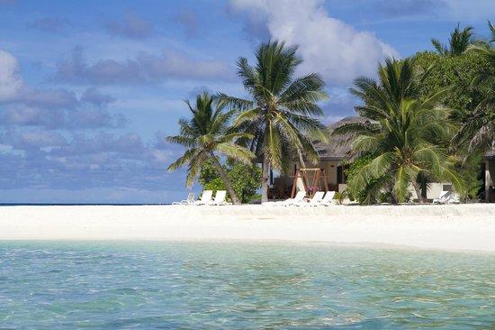 Summer Island Maldives: Superior Room