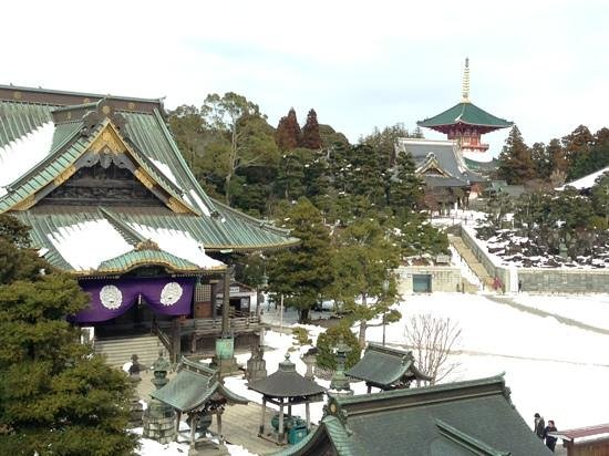 Naritasan Shinsho-ji Temple: top view