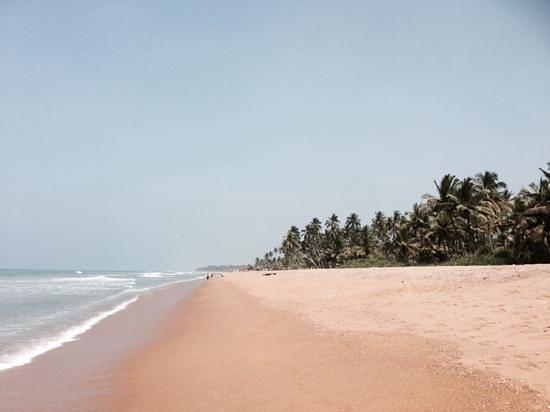 The Blue Water: endloser Starnd und schöne Palmen