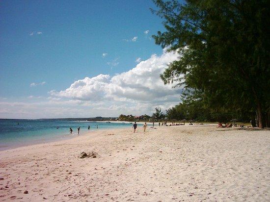 Alphavilla : beach flic en flac