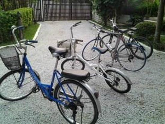 Penny's Home Stay & Spa : Bikes for hire