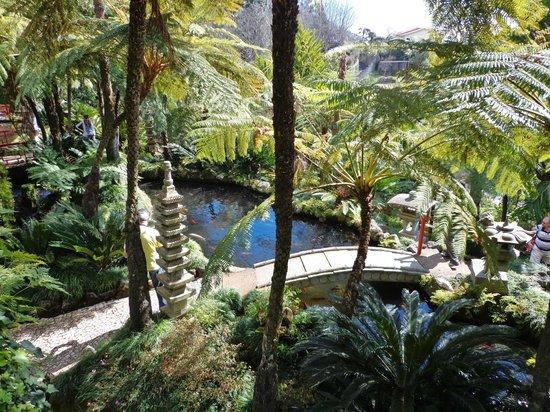 Monte Palace Tropical Garden : Et åndehul
