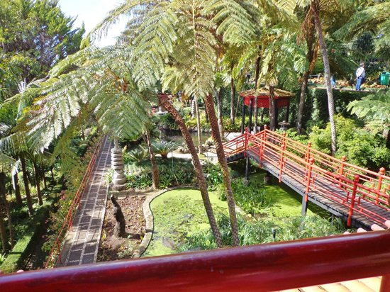 Monte Palace Tropical Garden : Orientalsk have