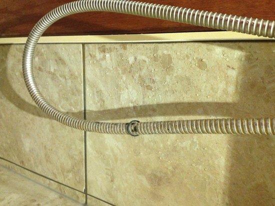 Carlton Hotel: flexible de douche
