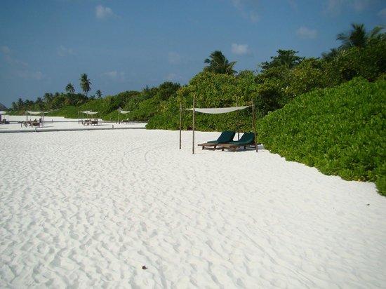 Coco Palm Dhuni Kolhu: La plage, mgnifique