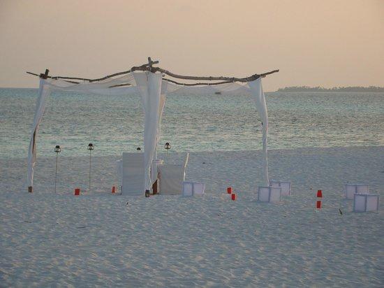 Coco Palm Dhuni Kolhu: Notre table sur la plage