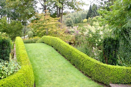 j 39 ai les m mes dans mon jardin picture of jardin de berchigranges gerardmer tripadvisor. Black Bedroom Furniture Sets. Home Design Ideas