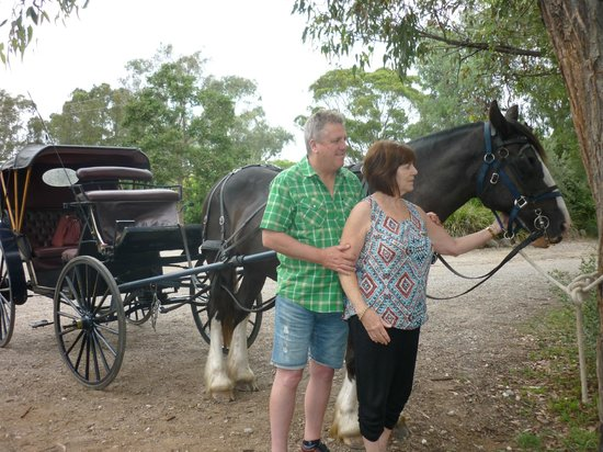 Hunter Valley Classic Carriages : WONDERFUL EXPERIENCE.