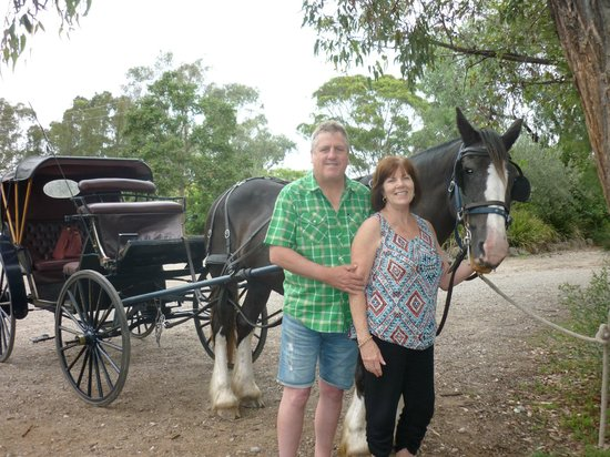 Hunter Valley Classic Carriages : WONDERFUL DAY