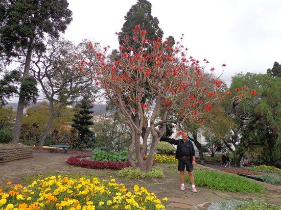 Santa Catarina Park: Flotte farver, selv i januar