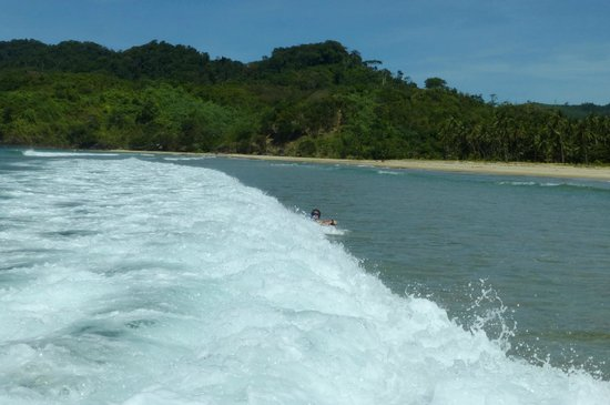 Verde Safari: Our children surfed
