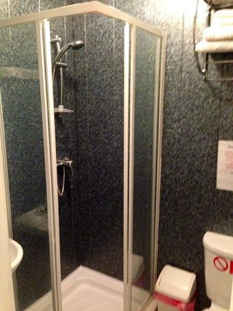 Glen Allen Hotel: bathroom with shower