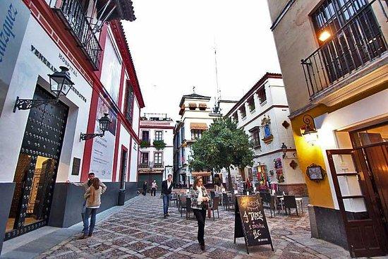 Sevilla Inn Backpackers: hostel en santa cruz, sevilla