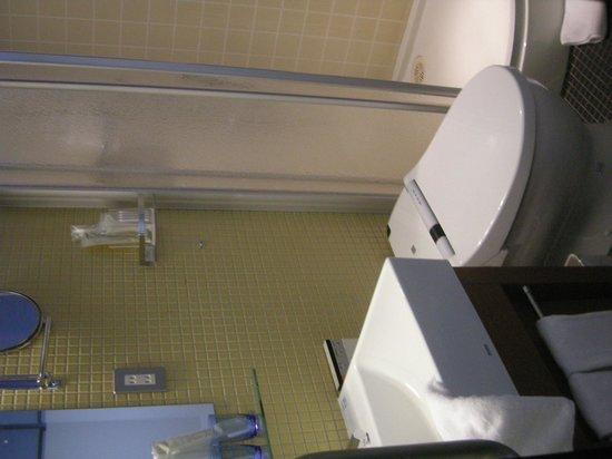the b akasaka: The bathroom
