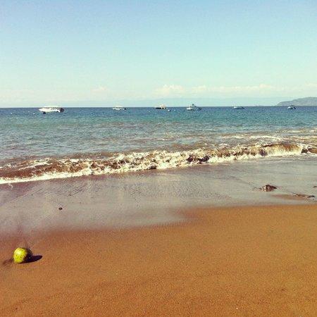 Hotel Las Caletas Lodge: La plage