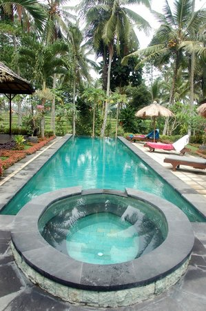 Junjungan Suite Villa : The pool