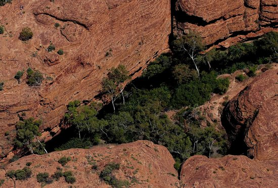 Kings Canyon, Australia: The garden of eden