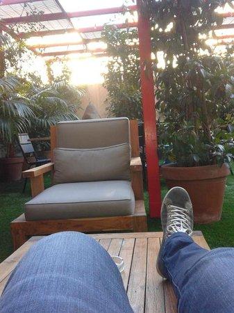 Praktik Garden: garden
