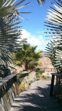 Sheraton Gran Canaria Salobre Golf Resort: Passerelle