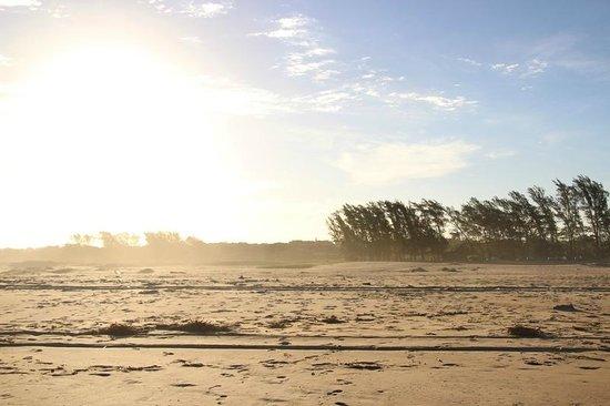 Lodge Afrique : Beach