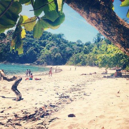 La plage Manuel Antonio à l'intérieur du parc