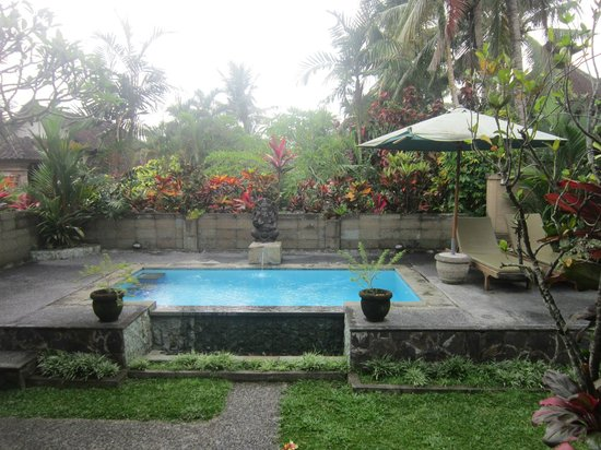 Bali Breeze Bungalows: Private Pool