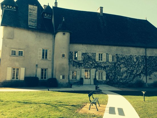 Chateau de Pizay : Château