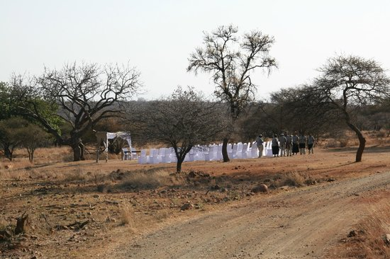 Hannah Game Lodge: Nature own cathedral for our ceremony - perfection