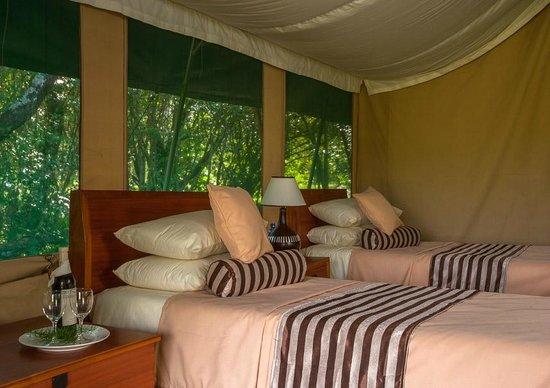 Losokwan Camp Maasai Mara: Twin room