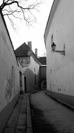 Skapo Apartments : Старая улочка, где расположены апартаменты