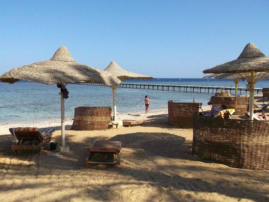 Flamenco Beach and Resort: panorama dalla spiaggia
