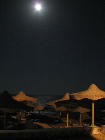 Sharm Club Hotel: Spiaggia by night