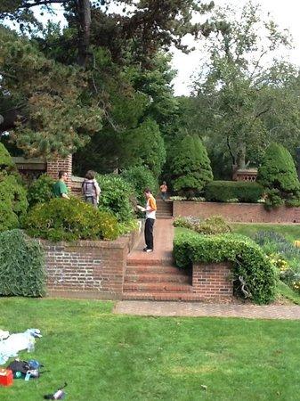 Lynch Park: Rose garden