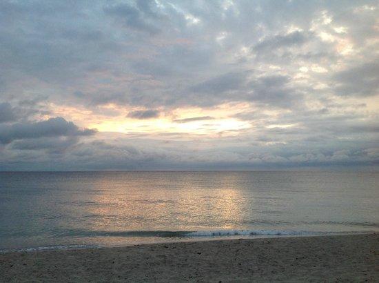 Four Seasons Resort, Palm Beach: view