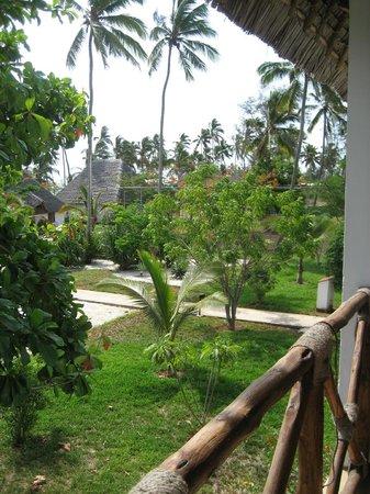 Uroa Bay Beach Resort : Jardin de notre chambre