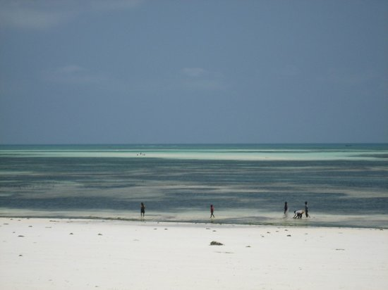 Uroa Bay Beach Resort: Plage marée basse