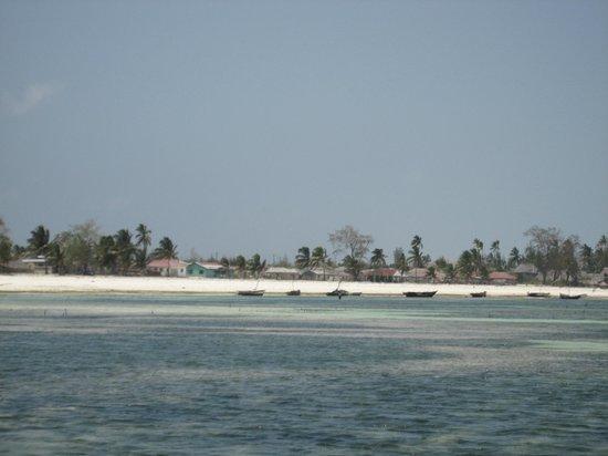 Uroa Bay Beach Resort: Vue de la plage