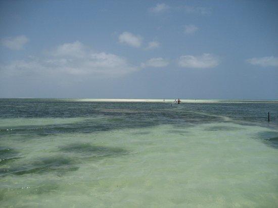 Uroa Bay Beach Resort: Plage marée basse, on devine le banc de sable blanc