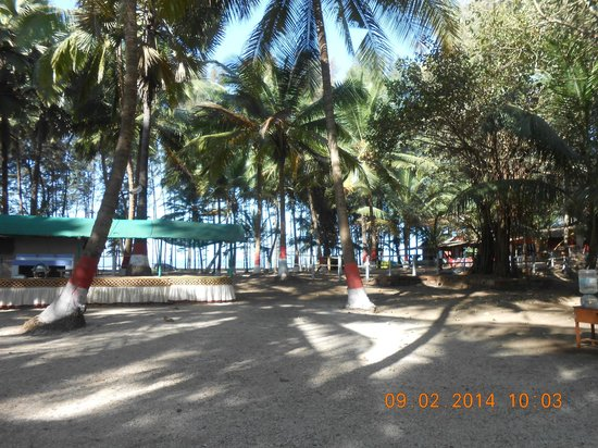Silver Sand Beach Resort: playing area