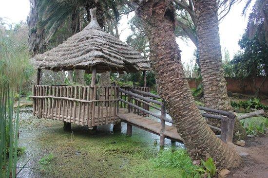 Exotic Gardens of Rabat Sale : Cabaña de zona Polinesia