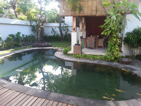 Ellora Villas: Private pool