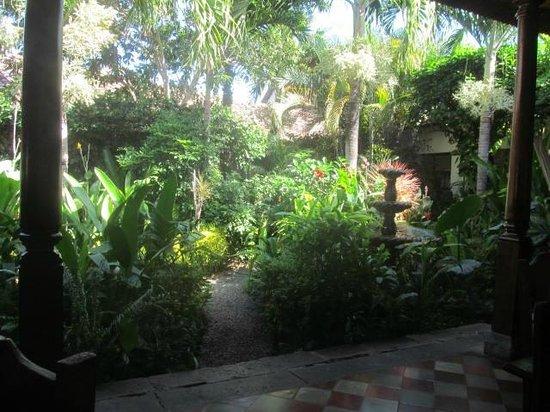The Garden Cafe: courtyard